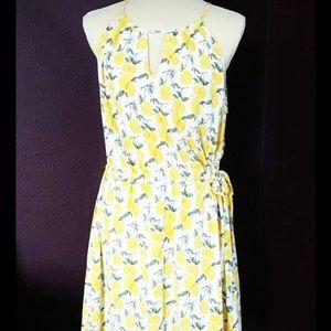 b8f075884a0 Pixley Dresses - Stitch Fix Lemon Summer Sun Dress